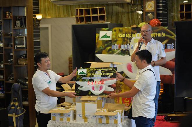 Những cây lan tiền tỷ của đại gia Việt, ly kỳ nhất là cây 300.000 đồng bán được 600 triệu - Ảnh 2.