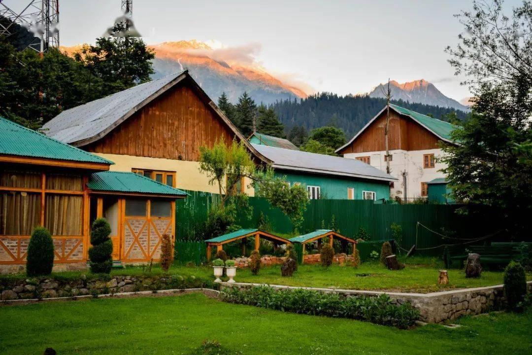 Bỏ phố về vùng nông thôn, gia đình 5 người biến cuộc sống trong ngôi nhà gỗ thành thiên đường ai cũng ước mơ - Ảnh 1.