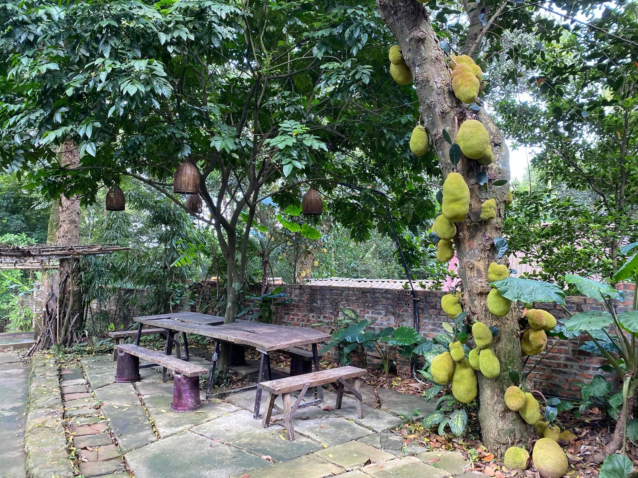 Mê mẩn với căn nhà second-home đẹp đến phát thèm tại ngoại ô Hà Nội, lộ bí quyết nhà đẹp quanh năm chỉ với 0 đồng của bà chủ nhà - Ảnh 23.