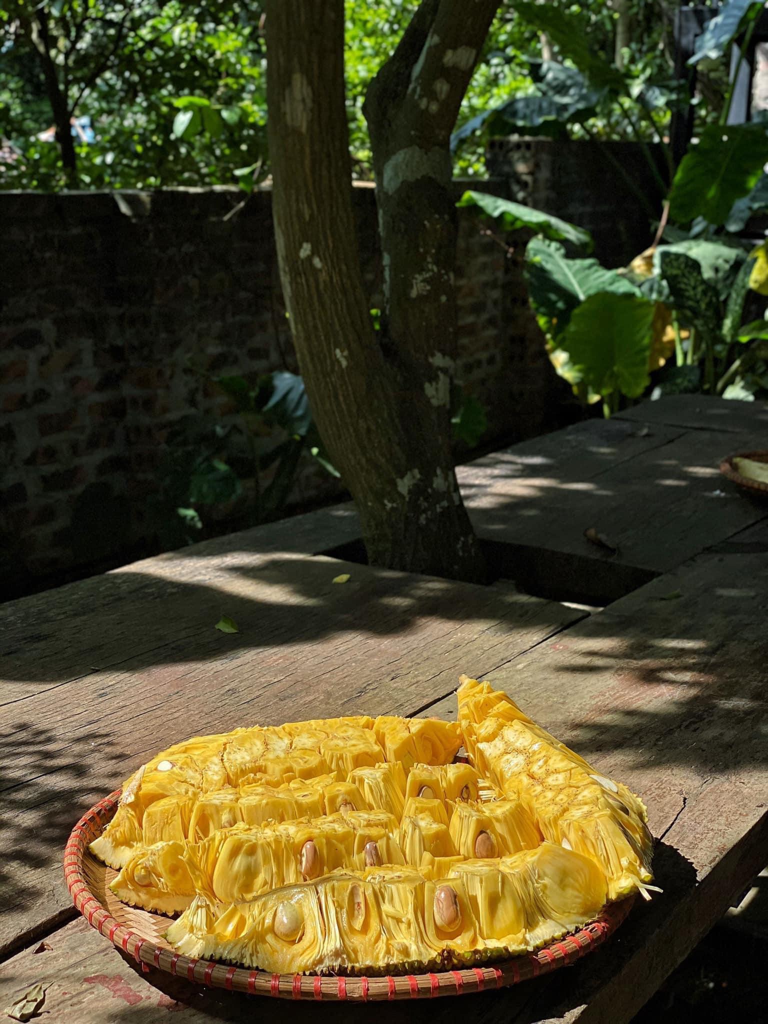 Mê mẩn với căn nhà second-home đẹp đến phát thèm tại ngoại ô Hà Nội, lộ bí quyết nhà đẹp quanh năm chỉ với 0 đồng của bà chủ nhà - Ảnh 17.