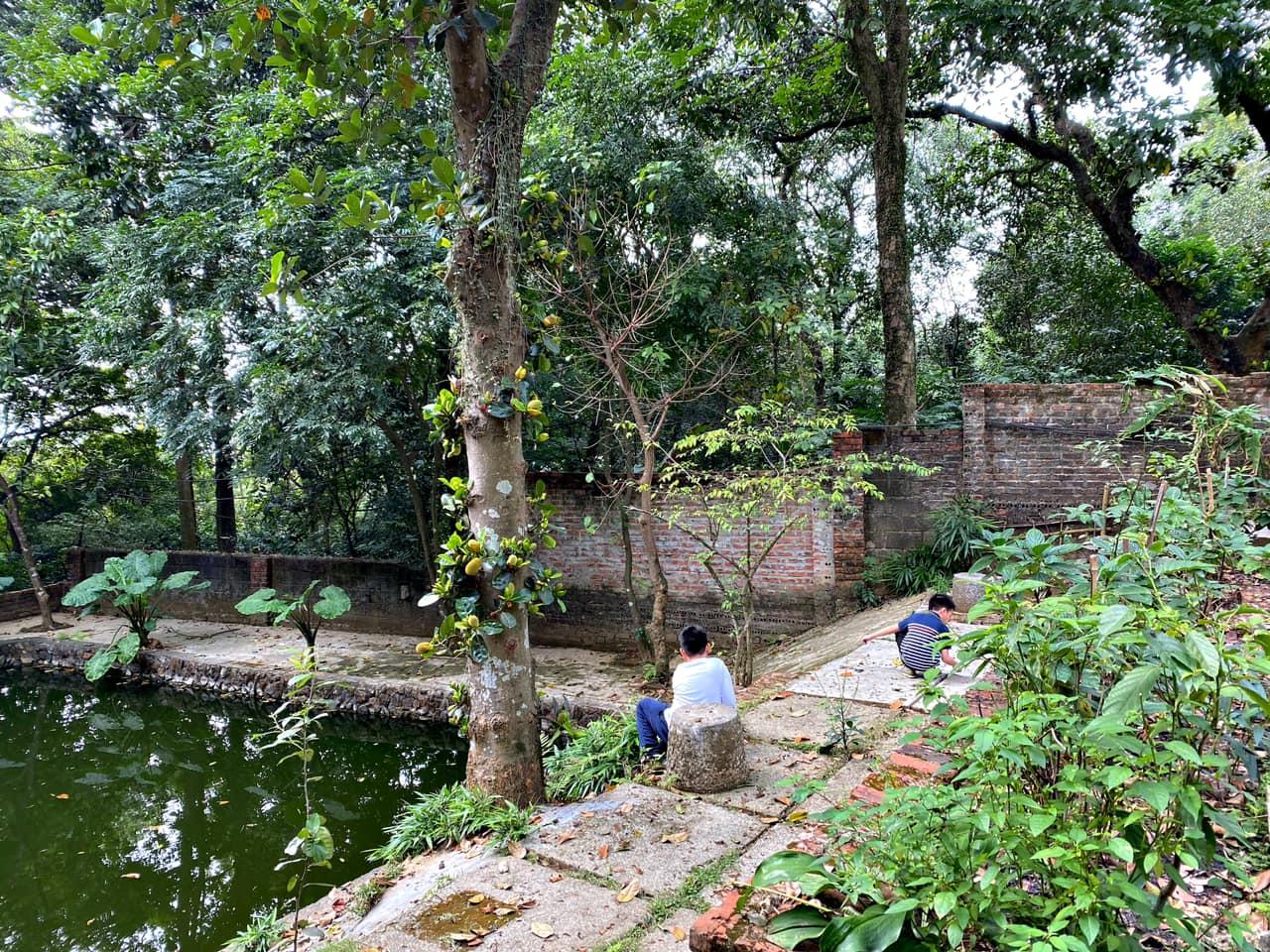 Mê mẩn với căn nhà second-home đẹp đến phát thèm tại ngoại ô Hà Nội, lộ bí quyết nhà đẹp quanh năm chỉ với 0 đồng của bà chủ nhà - Ảnh 15.