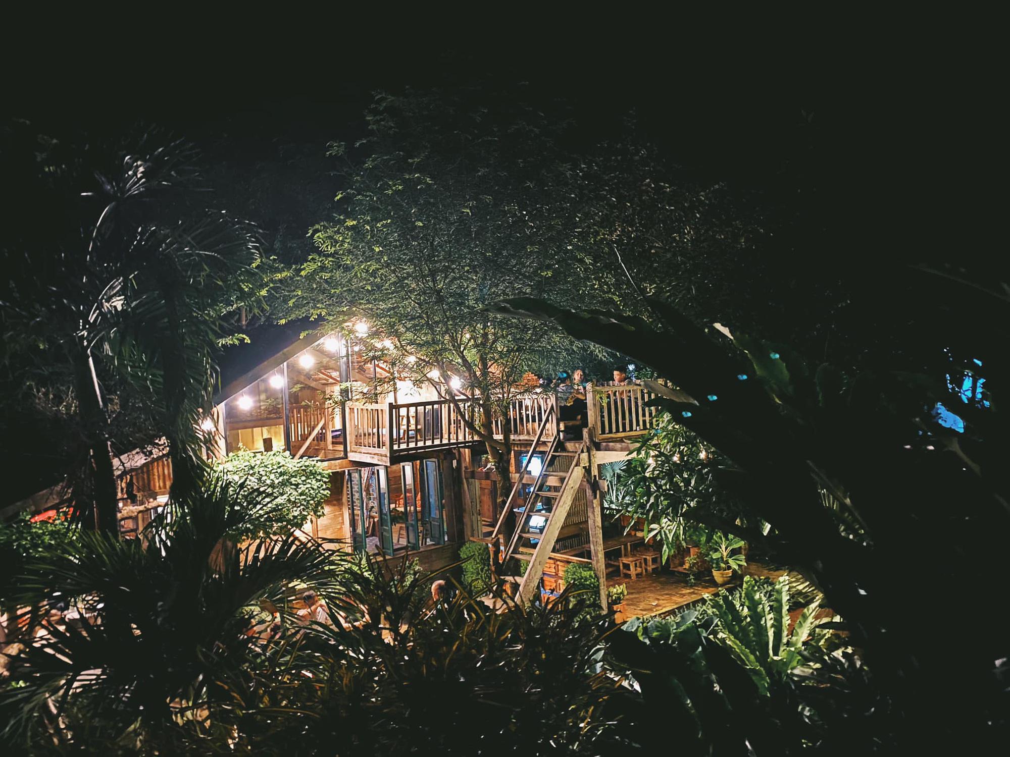 Bỏ phố về rừng, chàng trai dành 2 năm xây nhà gỗ giữa rừng mưa với chi phí 200 triệu đồng - Ảnh 7.