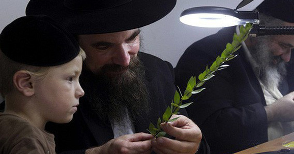 Đổi một quả lê xấu mã để lấy một người con ngoan: Bài học đắt giá về cuộc đời của người mẹ Do Thái có con là 3 tỷ phú - Ảnh 2.