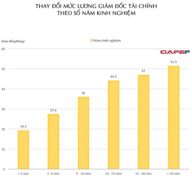 Khác biệt lương CFO tại doanh nghiệp Việt Nam ra sao? - Ảnh 1.