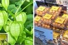 Quả mọc dại ở Việt Nam được bày bán 'sang chảnh' ở siêu thị nước ngoài