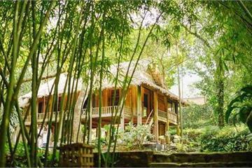 """Mê mẩn với căn nhà second-home đẹp đến phát """"thèm"""" tại ngoại ô Hà Nội, lộ bí quyết nhà đẹp quanh năm chỉ với 0 đồng của bà chủ nhà"""