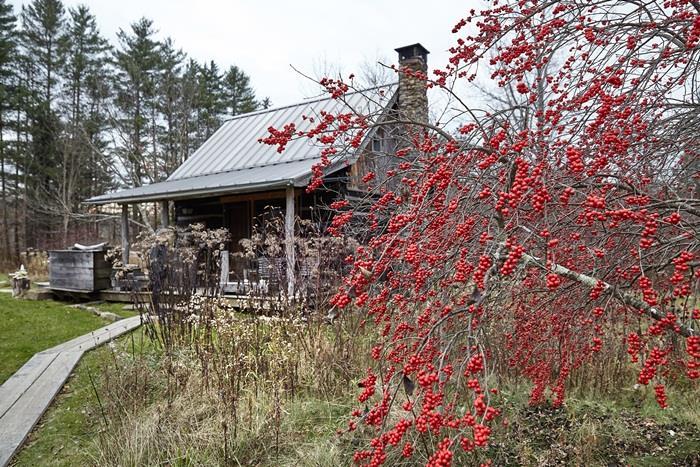 Chuồng bò được cải tạo thành ngôi nhà đẹp thơ mộng - 8