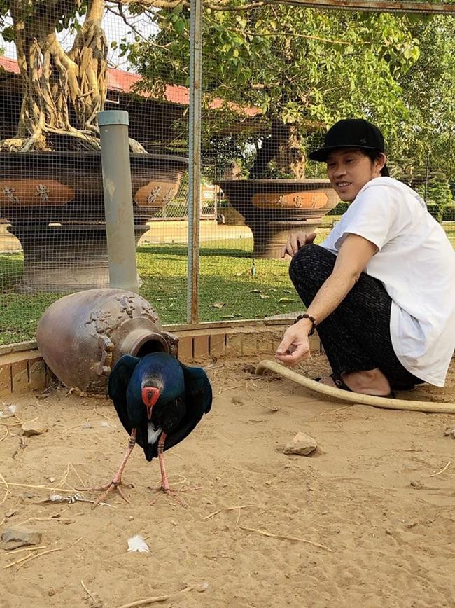Khi không đi diễn, Hoài Linh dành thời gian ở nhà chăm sóc vườn tược, cây cối.