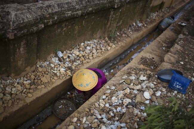 Hồng ngọc có thể được tìm thấy ở nơi không ai ngờ như rãnh thoát nước nối với các mỏ.