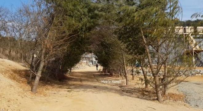 Giới trẻ check-in ngôi làng Triều Tiên mộc mạc trong 'Hạ cánh nơi anh' - 20