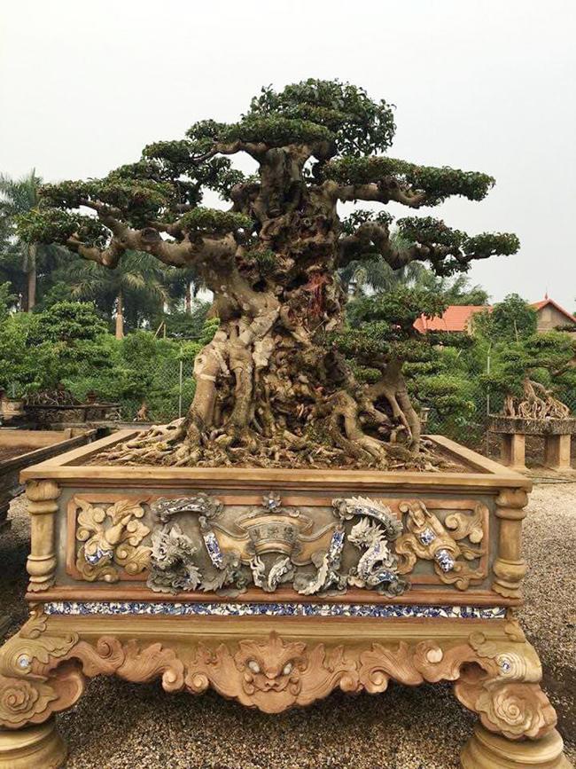 """Tác phẩm """"Tiên lão giáng trần"""" đã về vườn nhà ông Chí, sau này nếu ai muốn sở hữu thì phải bỏ ra rất nhiều tiền, chắc không dưới 1 triệu USD."""