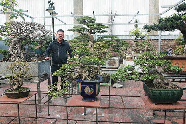 Vườn cây cảnh rộng hơn 1.000m2 của anh Ngô Mạnh Hiệp (Bát Tràng, Gia Lâm, Hà Nội) với gần 500 cây cảnh, đủ loại kích cỡ, có giá trị gần 10tỷ đồng.