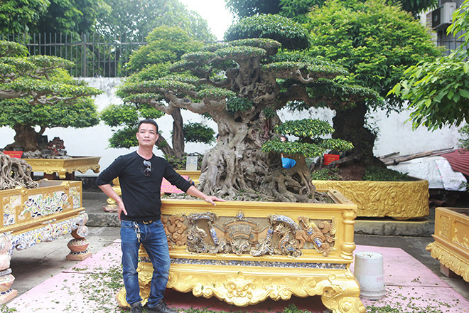 Trong chưa đầy 10 năm ôngđã bỏ ra trăm tỷ đồng để chơi cây trong nước, ông đi khắp đất nước sưu tầm những cây quý nhất.