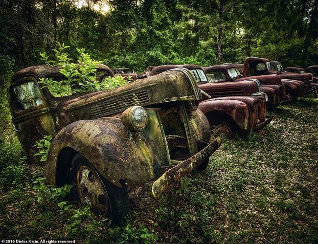 Vẻ đẹp ma mị của những chiếc ô tô bị thiên nhiên xâm lấn - 1