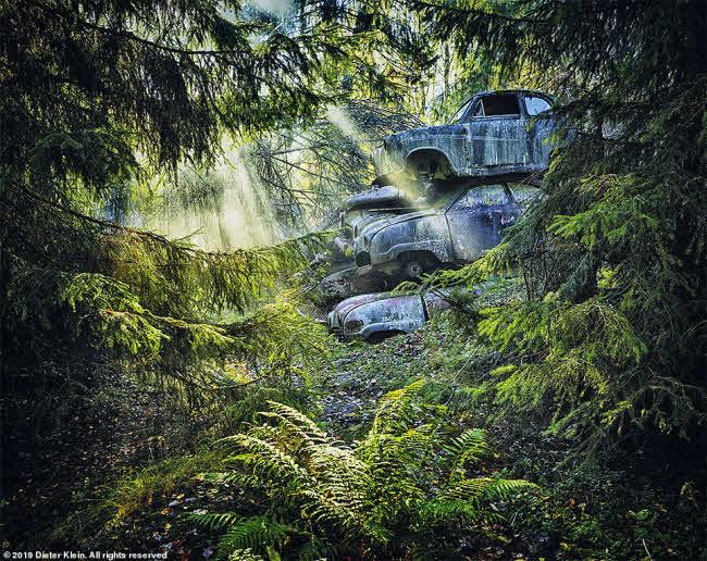 Vẻ đẹp ma mị của những chiếc ô tô bị thiên nhiên xâm lấn - 4