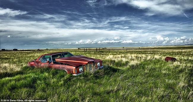 Vẻ đẹp ma mị của những chiếc ô tô bị thiên nhiên xâm lấn - 6