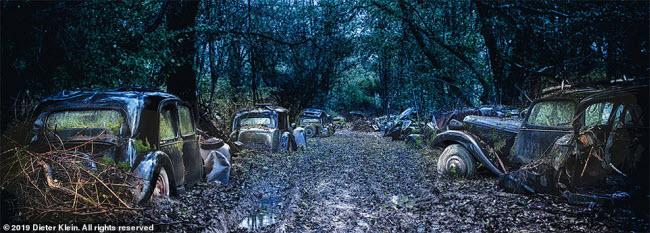 Vẻ đẹp ma mị của những chiếc ô tô bị thiên nhiên xâm lấn - 7