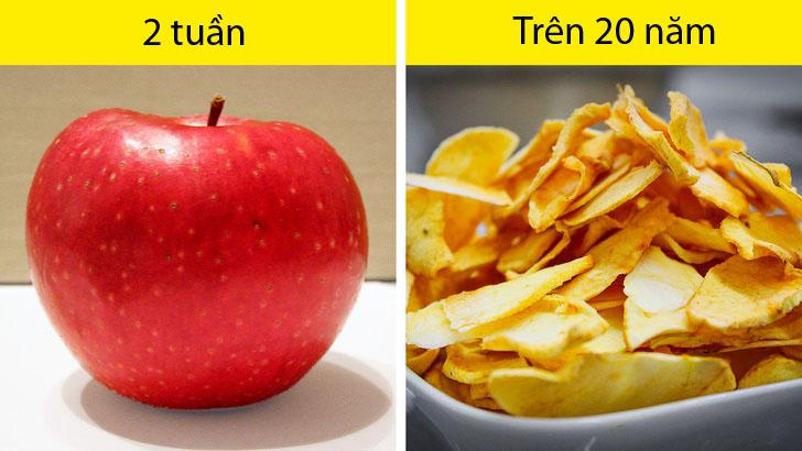 10 loại thực phẩm có thể được bảo quản suốt nhiều năm nếu làm đúng cách - 4