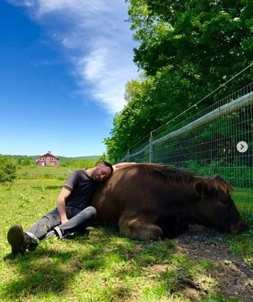 Thú vui mới của giới nhà giàu: Chi 1,7 triệu để được… ôm bò