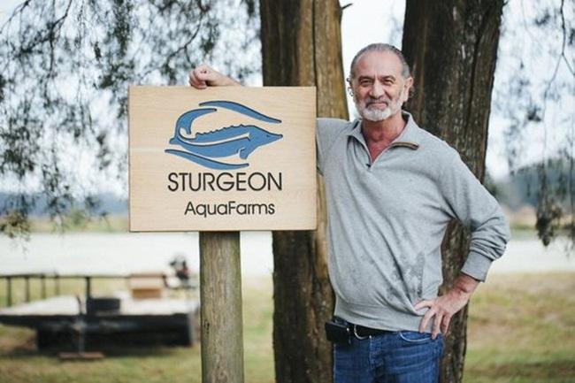Trang trại đã thu hoạch trứng của các loại cá tầm khác như Sterlet và Sevruga. Chúng mất ít thời gian để sinh trưởng hơn.