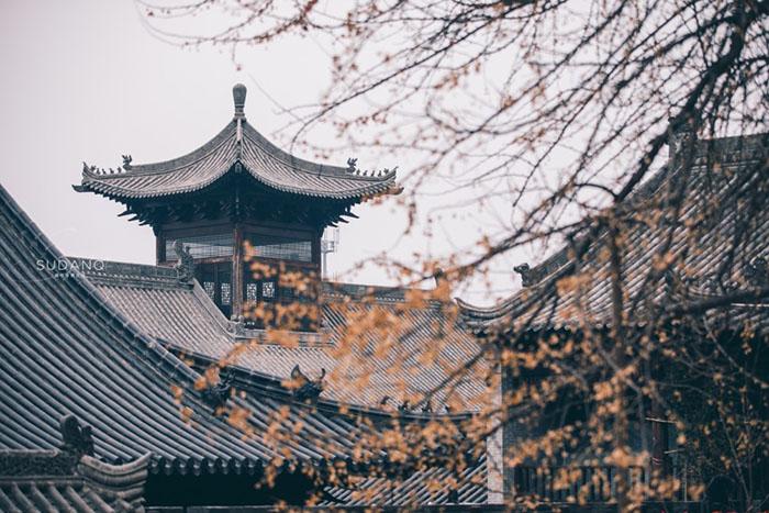 Ngôi chùa hàng nghìn năm tuổi bỗng dưng nổi tiếng chỉ vì loài cây này - 14