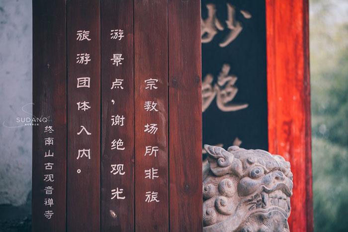 Ngôi chùa hàng nghìn năm tuổi bỗng dưng nổi tiếng chỉ vì loài cây này - 2