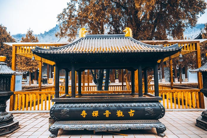 Ngôi chùa hàng nghìn năm tuổi bỗng dưng nổi tiếng chỉ vì loài cây này - 8