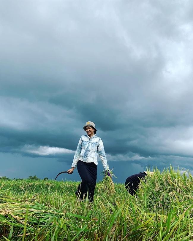 Hình ảnh H'Hen Niê đi cắt lúa được cô chia sẻ cách đây không lâu thu hút sự chú ý của cư dân mạng.