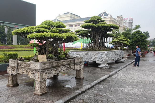"""Nam Định được biết đến như vùng đất làm cây cảnh nghệ thuật lớn nhất miền Bắc. Chơi cây cảnh là nghề chơi tốn tiền và kỳ công, cây càng già, thế càng """"độc"""" càng có giá trị. Những người trồng cây ở Nam Điền, Lộc An đã sáng tạo ra những """"siêu cây"""" bán cho những đại gia ở những tỉnh khác đến mua."""