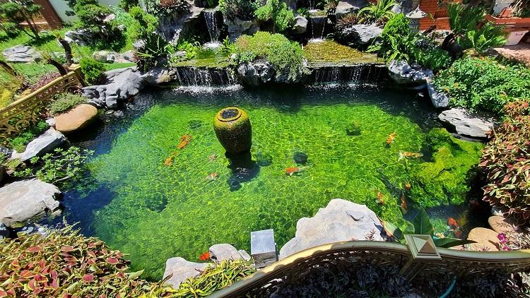 Choáng ngợp những căn biệt thự của đại gia Việt có bể cá Koi tiền tỷ - 12