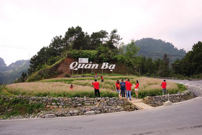 Hoa tam giác mạch Hà Giang nở rộ khiến du khách mê mải quên lối về - 8