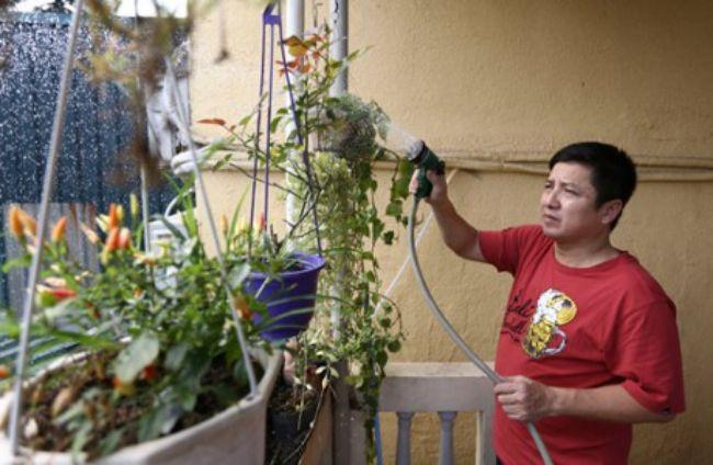 Chí Trung còn có thú vui chăm sóc một vườn hoa nhỏ trên sân thượng.