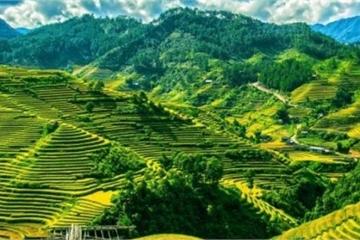 Việt Nam lọt top những thiên đường du lịch một mình