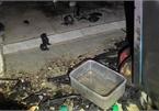 TP.HCM: Cháy nhà lúc rạng sáng, 5 người mắc kẹt bên trong