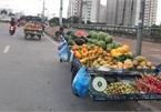 Hà Nội: Chợ cóc, chợ tạm vẫn hoạt động bất chấp lệnh cấm
