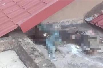 Thi thể cụ bà mất tích hơn một năm được phát hiện trên mái nhà