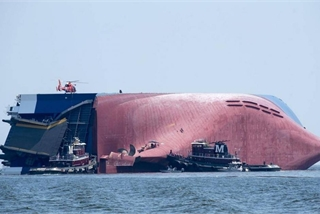 Thảm họa môi trường sau vụ đắm tàu chở 4.200 ô tô