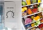 Mẹo chỉnh tủ lạnh tiết kiệm điện gấp đôi, cuối tháng nhìn hóa đơn mà ngỡ ngàng