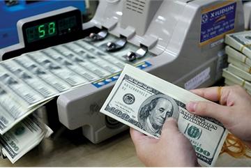 Vietnam steps up fight against dollarization