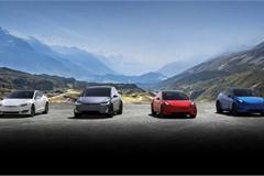 Top 5 thương hiệu có doanh số xe điện cao nhất thế giới