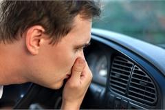 Vì sao ô tô phát sinh mùi khí thải khó chịu?