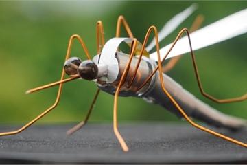 Kho hàng nghìn côn trùng độc đáo làm từ vật dụng bỏ đi của chàng trai 9X