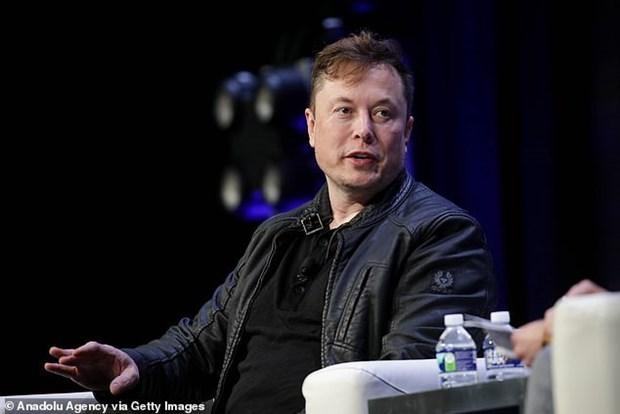 Ty phu Elon Musk du dinh dau tu 30 ty USD vao dich vu Internet ve tinh hinh anh 1