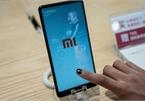 Xiaomi sẽ ra mắt hơn 10 mẫu smartphone 5G trong năm tới?