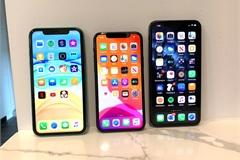 Apple lên kế hoạch ra iPhone lớn nhất từ trước tới nay