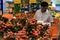 Góp phần thúc đẩy sự phát triển bền vững của nông sản Việt
