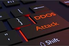 Công ty mạng hàng đầu Nga ngăn chặn cuộc tấn công DDoS lớn nhất từ trước đến nay