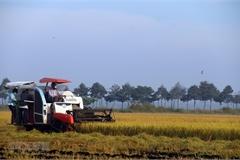 Xây hệ sinh thái phát triển kinh tế nông thôn để thu hút đầu tư lớn