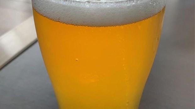 Hang bia lon nhat Australia ngung hoat dong do bi tan cong mang hinh anh 1