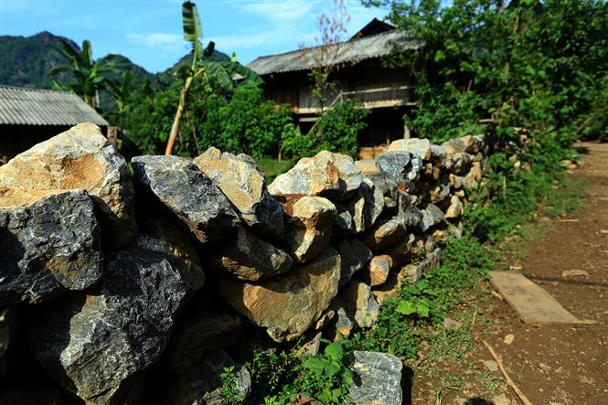 Stone fences are used to separate houses, creating the distinctive feature (Photo: VNA)